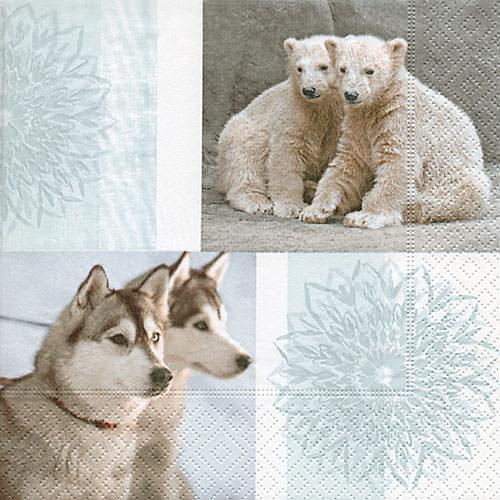 servietten eisb r und wolf 60820 weihnachten. Black Bedroom Furniture Sets. Home Design Ideas