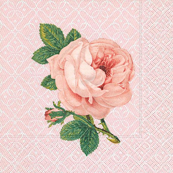 servietten portr t einer rose 200307 ganzjahres servietten. Black Bedroom Furniture Sets. Home Design Ideas