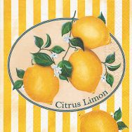 Cocktail napkins - Citrus Limon