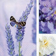 Cocktail napkins - Dream of lavender