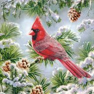 Cocktail napkins - Red cardinal