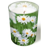 Candle in a glass - Full of daisies