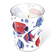 Candle in a glass - Tropical fish