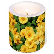 Candle - Yellow prime roses