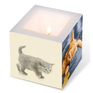 Candle - Autumn cats, small