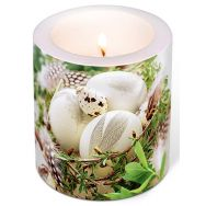 Candle - Bird nest