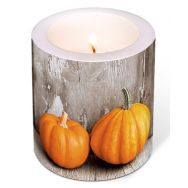 Candle - Two pumpkins