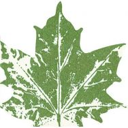 Napkins punched Maple leaf green
