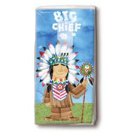 Handkerchiefs - Big chief