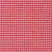 Napkins - Vichy red