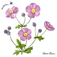 Cocktailservietten - Anemone