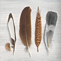 Napkins - Collection of feathers