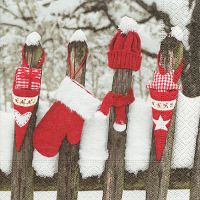 Napkins - Outdoor christmas