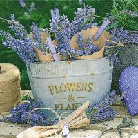 Napkins - Lavender decoration