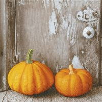 Napkins - Two pumpkins